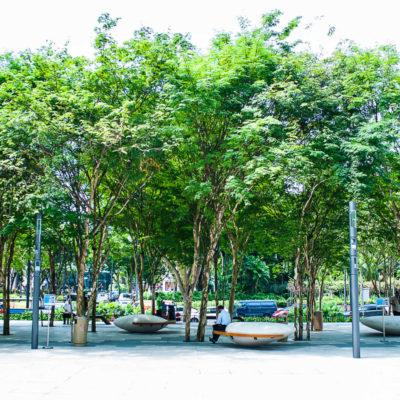 Creating Public Places That Matter
