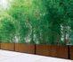 Bambu Planters Context 2